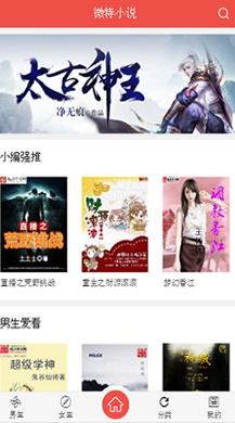 VIP小说防封版V5.1.2公众号版本,修复自动卡密,支持采集各大网站连载小说