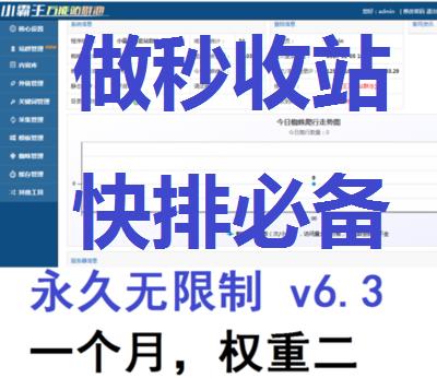 SEO之小霸王万能站群池v6.3最新破解面授权版,引蜘蛛提高排名,免授权永久使用
