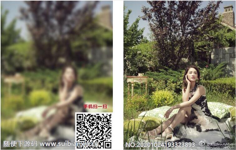 对图片进行加密的网络平台v2.7版本源码包含三种模式上传图片可二次开发修改带搭建视频教程