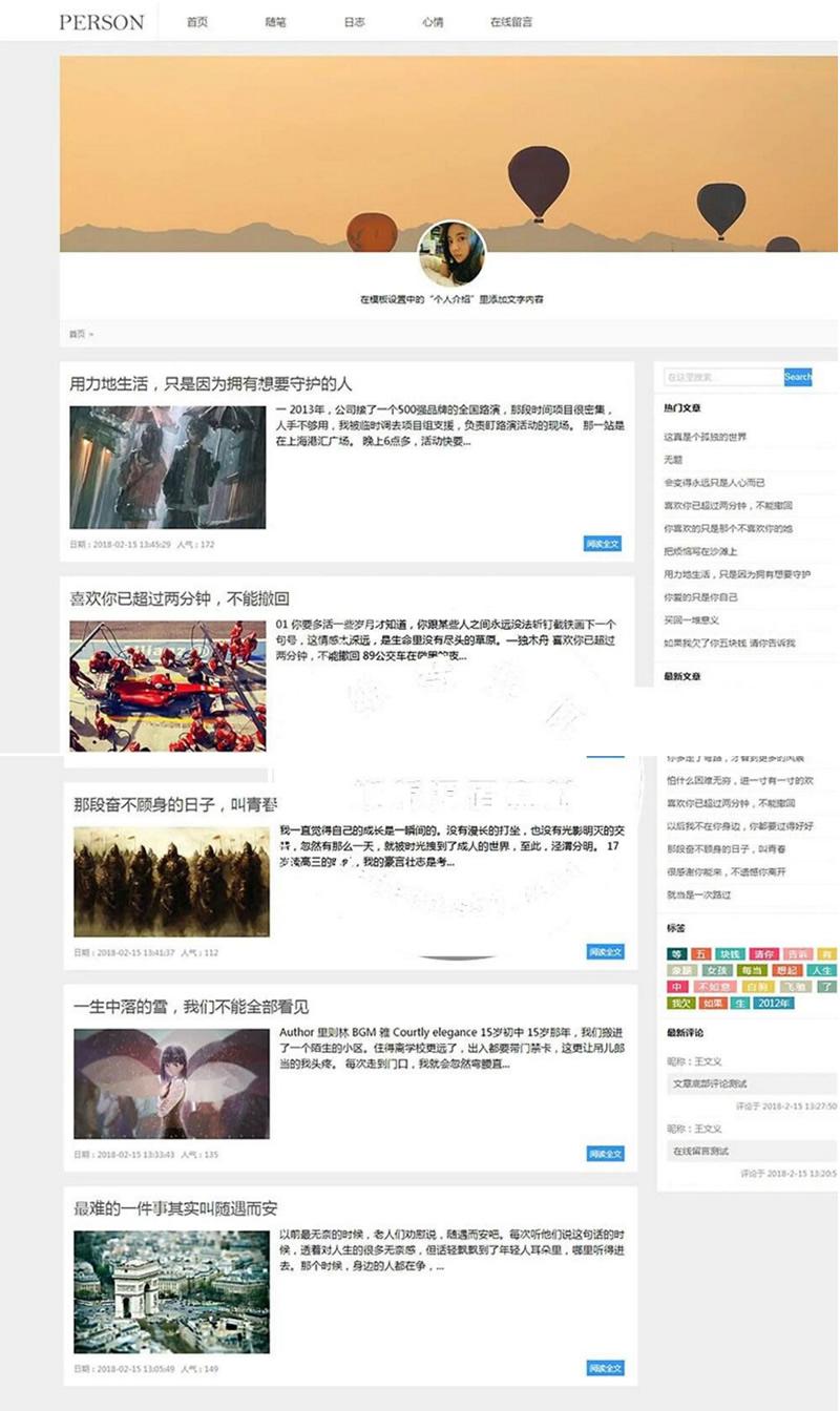 织梦dedecms模板简洁PERSON个人博客新闻资讯网站模板(带手机移动端)